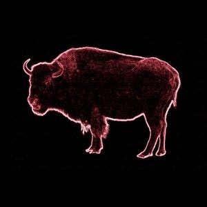 Image for 'I Am Buffalo'