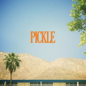 Image for 'Pickle'