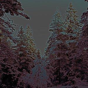 Imagen de 'Jingle Bells'