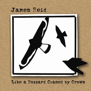 Image for 'Like a Buzzard Chased by Crows'