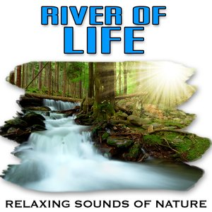 Image for 'Natural Calming Power of a Clean, Crisp River'