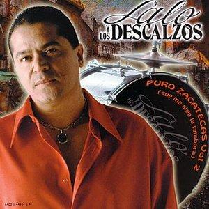 Image for 'Puro Zacatecas Vol 2'