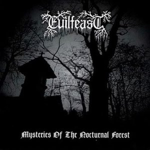 Image for 'Mysteries of the Nocturnal Forest'