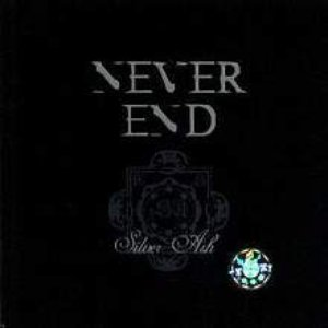 Image for 'Never End'
