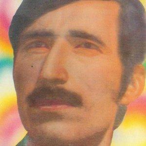 Image for 'Sarur Logari'