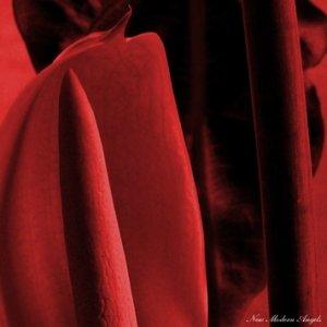 Imagem de 'New Modern Angels'