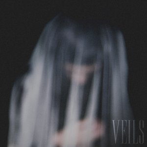 Image for 'Veils'