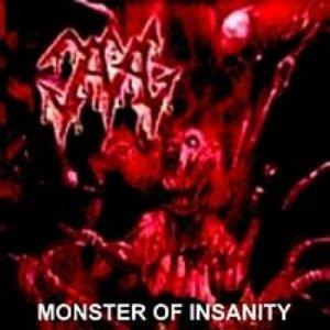 Bild für 'Monster Of Insanity'