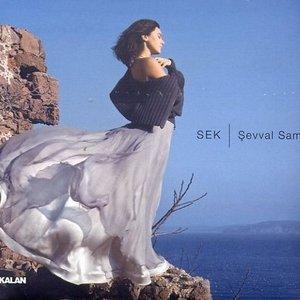 Image for 'sek'