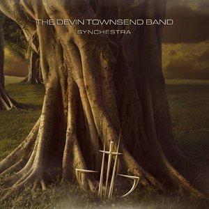Bild för 'Synchestra'