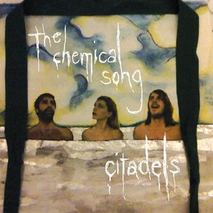 Image for 'The Chemical Song Single'