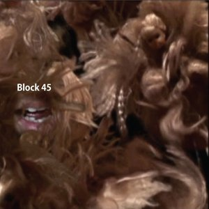 Image for 'Block 45'