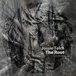 Image for 'The Root'