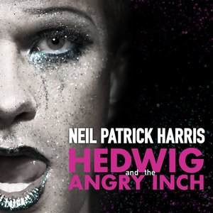 Image for 'Hedwig And The Angry Inch Original Broadway Cast Recording'