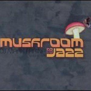 Image pour 'Mushroom Jazz Volume Five'