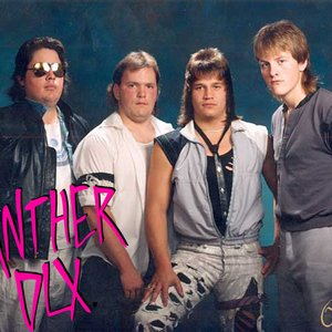Image for 'Panther DLX'