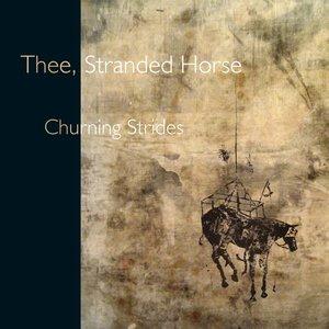 Image for 'Churning strides'