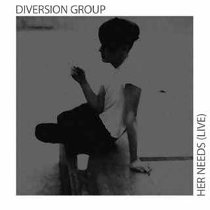 Image for 'Diversion Group'