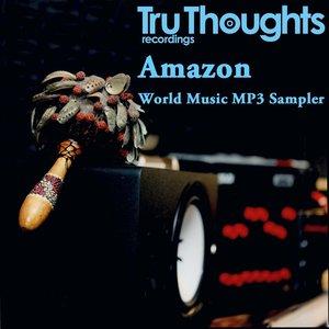 Bild för 'Tru Thoughts World Music MP3 Sampler'
