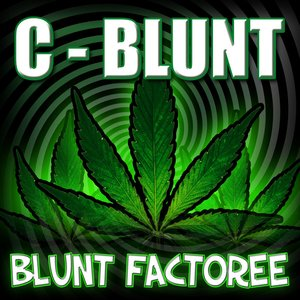 Image for 'Blunt Factoree'