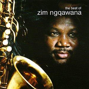 Bild für 'The Best Of Zim Ngqawana'