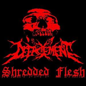 Imagem de 'Shredded Flesh'