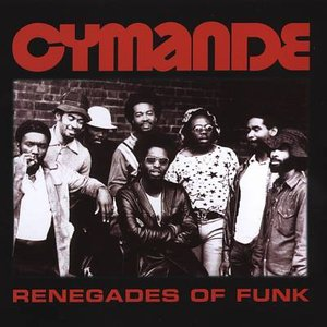 Image for 'Renegades of Funk'