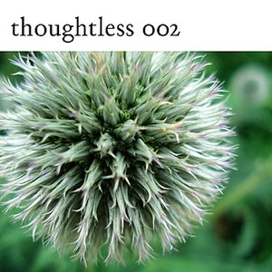 Image for 'Milk Thistle'