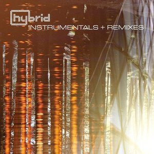 Image for 'Instrumentals and Remixes'