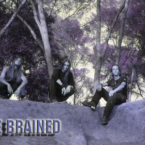 Image for 'THE BRAINED'