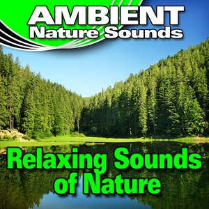 Image for 'Breathe Deeply in Tune with the Relaxing Sounds of Nature'