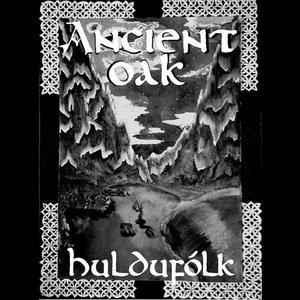 Image for 'Huldufólk'