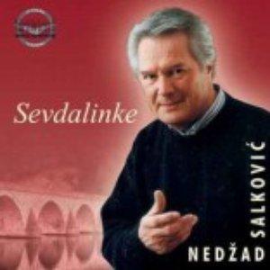 Image for 'Nedzad Salkovic'