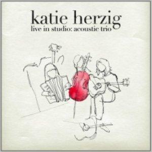 Immagine per 'Live In Studio: Acoustic Trio'