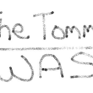 Image for 'The Tommy Was'