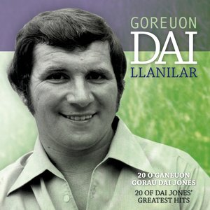 Image for 'Goreuon / Best Of Dai Llanilar'