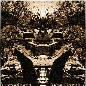 Image for 'Droefheid - Gabe-Unruh Split'