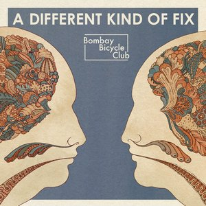 Image for 'A Different Kind of Fix'