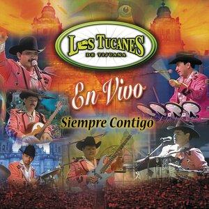 Bild für 'La Piñata'