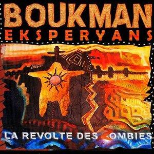 Image for 'La Révolte des Zombies'