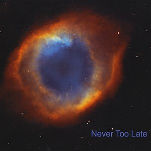 Image for 'Never Too Late'