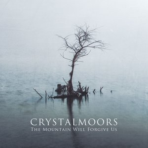 Image for 'The Mountain Will Forgive Us'