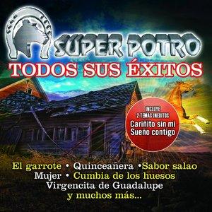 Image for 'Todos Sus Éxitos'