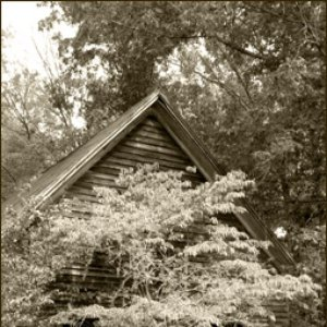 Image pour 'Pita Hall'
