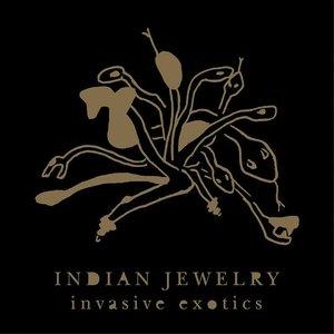 Image for 'Invasive Exotics'