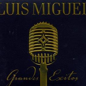 Image for 'Grandes Exitos - US CD version'