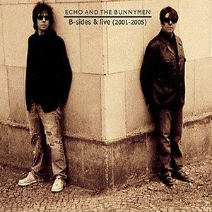 Immagine per 'B-Sides And Live (2001 - 2005)'