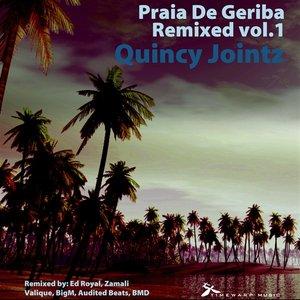 Image for 'Praia De Geriba Remixed Vol.1'