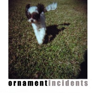 Image for 'Incidents'