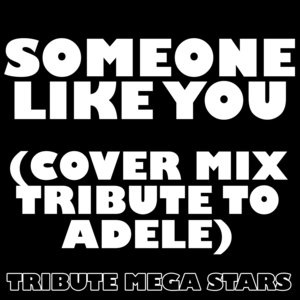 Immagine per 'Someone Like You (Adele Cover Mixes)'